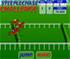 Steeplechase-Challenge